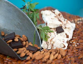 Nougat Nutella